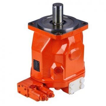 Various Models Rexroth A10V a 4V Hydraulic Pump