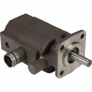 High Pressure PV2r China Hydraulic Double Vane Pump