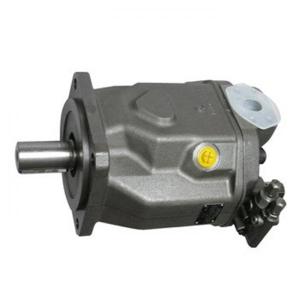 Combination A4V+A10V Hydraulic Axial Pistom Pump #1 image