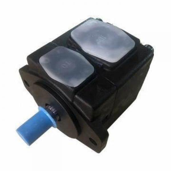China Hydraulic PVS Piston Pump Cheap Price for Industrial Machinery PVS-2B-45-0-12 #1 image