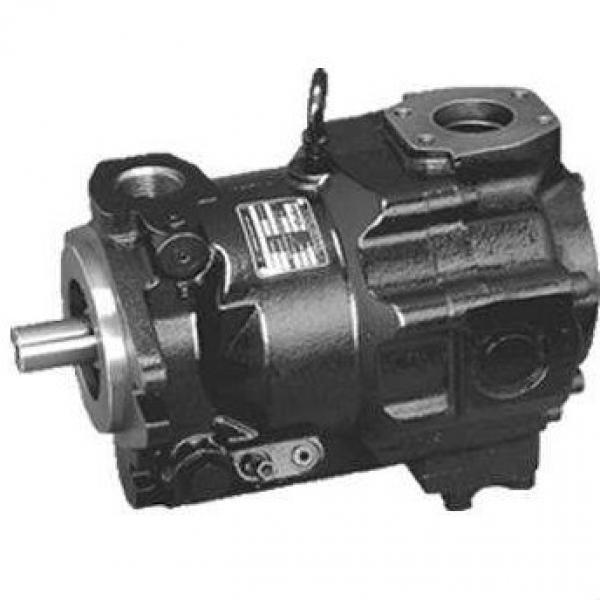Ultra-Low Pulse Double Hydraulic Vane Pump,Hydraulic Pump Price List,China Hydraulic Pump #1 image