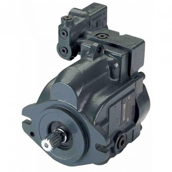 Lisheng hydraulic pump bobcat and motor price cylinder Exporter #1 image