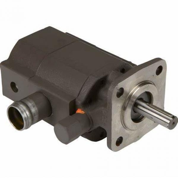 High Pressure PV2r China Hydraulic Double Vane Pump #1 image