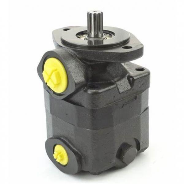 Hydraulic Vane Pump for Vickers (V20, V10, V2010, V20F, V10F) #1 image