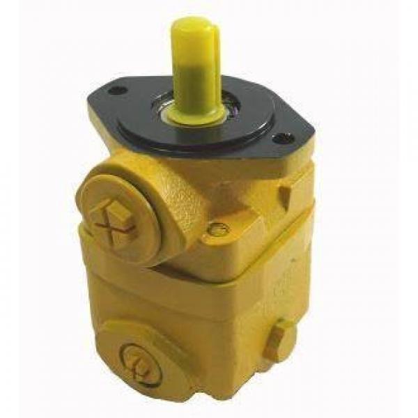 V2020 Vane Pump (vickers, Shertech V2020F, V2020P for Mobile Equipment like Caterpillar, Komatsu, Daewoo, Hitachi, Volvo, Hyundai, Kobelco, case, Altas) #1 image