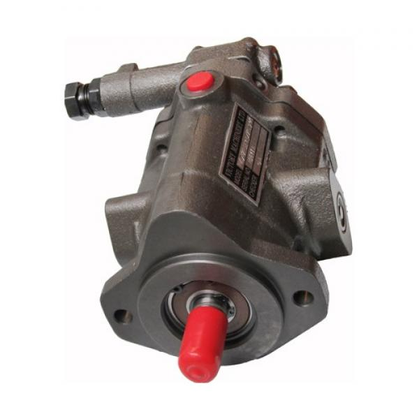 Variable Displacement Eaton Vickers Pvq10 Pvq13 Pvq20 Pvq40 Pvq45 Piston Pump #1 image