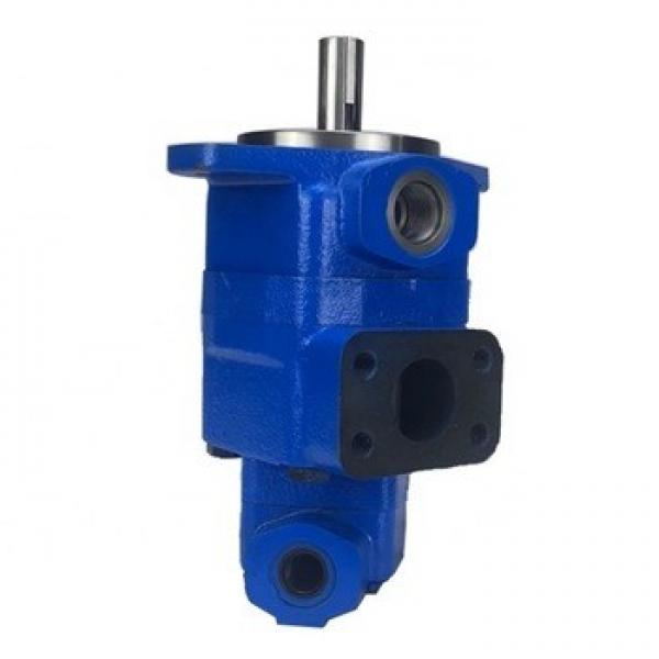 V20 Single Hydraulic Vane Pumps (vickers, Shertech used for Industrial Equipment (ring size 8)) #1 image