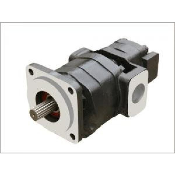 Parker/Commerical/Permco P330 Pump and Motor #1 image
