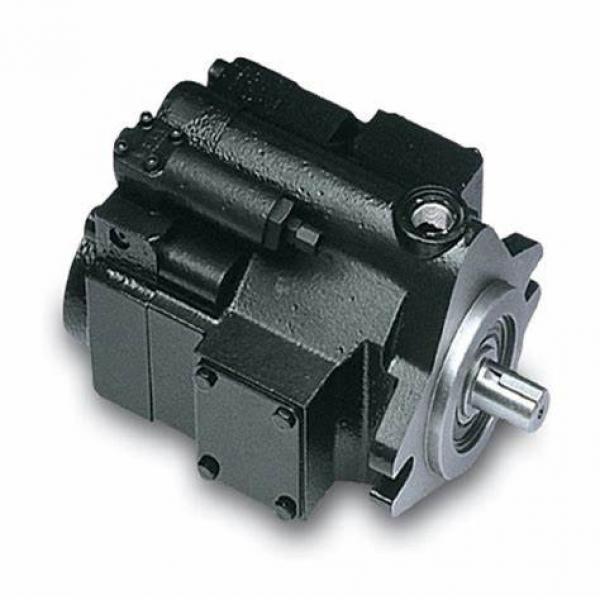 China supplier commercial/parker p30 p31 p50 p51 p75 p76 gear pump hot sale #1 image