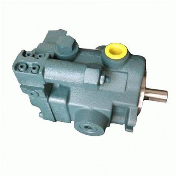 T6h T6h20 T6h29 T6h20b T6h20c T6h29b T6h29c Combined Hydraulic Parker Denison Hybrid Pump #1 image