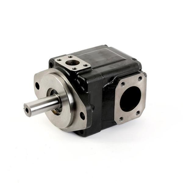 T6 T7 Series Parker Denison Vane Pump Cartridge (T6CC, T6C, T6D, T6D, T7E) #1 image