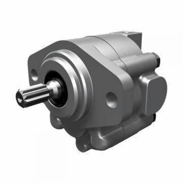 Parker Replacement Parts Hydraulic Gear Pump Tractor P series P30 P51 P75 P350 Pumps #1 image