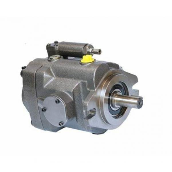 Hydraulic gear pump for NEW HOLLAND 7635/8160/8260... / hydraulic pump for new holland tractor #1 image